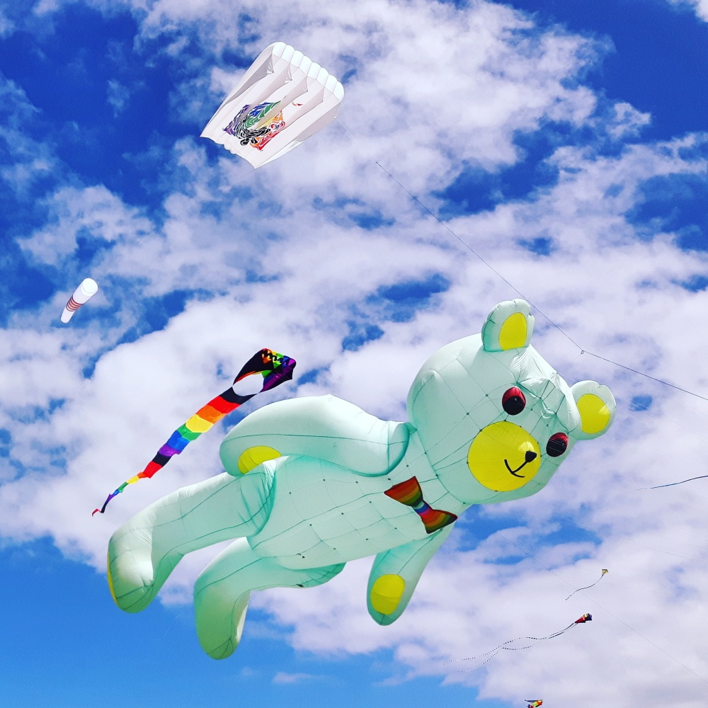 I'd rather fly a kite than play with my phone!